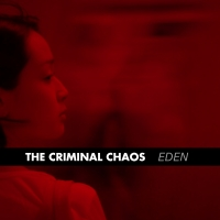 The Criminal Chaos